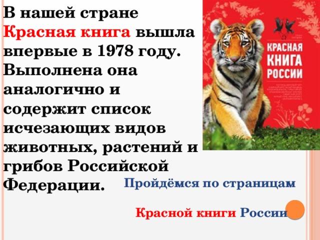 В нашей стране Красная книга вышла впервые в 1978 году. Выполнена она аналогично и содержит список исчезающих видов животных, растений и грибов Российской Федерации. Пройдёмся по страницам  Красной книги России