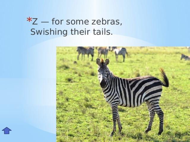 Z — for some zebras,  Swishing their tails. Zz