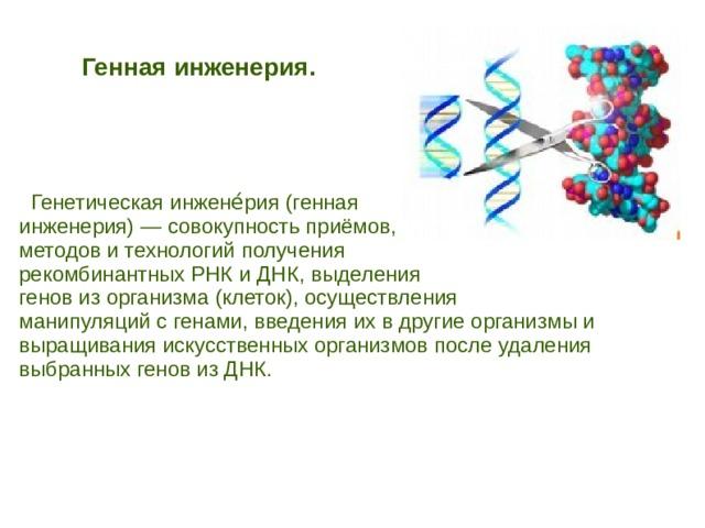 Генная инженерия.   Генетическая инжене́рия (генная инженерия) — совокупность приёмов, методов и технологий получения рекомбинантных РНК и ДНК, выделения генов из организма (клеток), осуществления манипуляций с генами, введения их в другие организмы и выращивания искусственных организмов после удаления выбранных генов из ДНК.