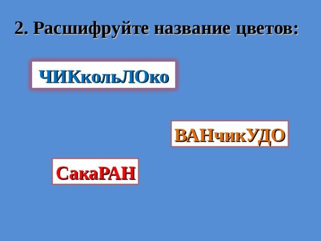 2. Расшифруйте название цветов: ЧИКкольЛОко ВАНчикУДО СакаРАН