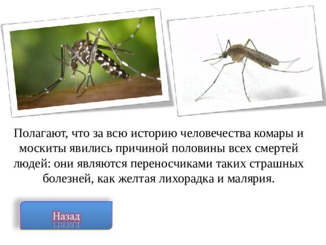 Полагают, что за всю историю человечества комары и москиты явились причиной половины всех смертей людей: они являются переносчиками таких страшных болезней, как желтая лихорадка и малярия.