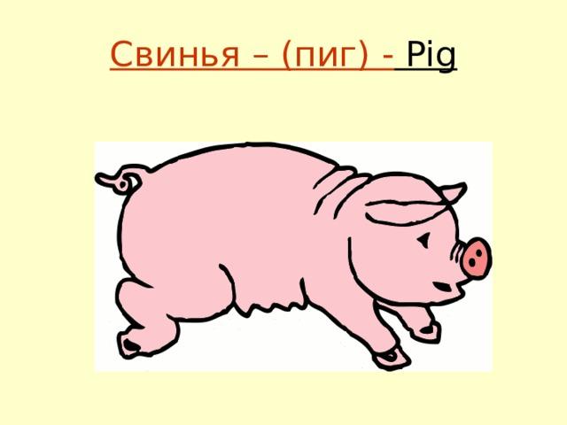 Свинья – (пиг) - Pig