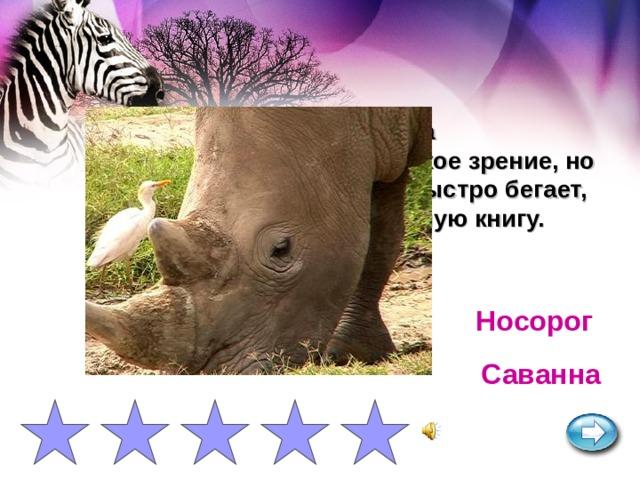 Самое крупное после слона млекопитающее. Имеет плохое зрение, но очень хорошее обоняние. Быстро бегает, агрессивен. Занесен в Красную книгу. Носорог Саванна