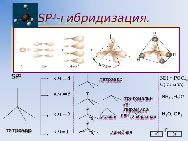 SP 3 - гибридизация. SP 3 к.ч.=4 NH 4 + , РОС l 3 С( алмаз) тетраэдр к.ч.=3 NH 3 ,H 3 O + тригональная пирамида H 2 O, OF 2 к.ч.=2 или V -образная угловая тетраэдр Н F к.ч=1 линейная