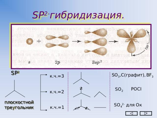 SP 2- гибридизация. SP 2 SO 3 ,С(графит), BF 3 к.ч.=3 РО CI SO 2 к.ч.=2 плоскостной треугольник SO 4 2-  для Ок к.ч.=1