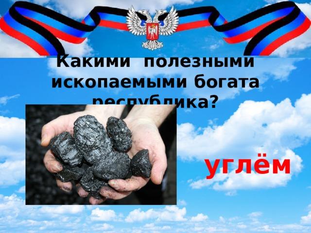 Какими полезными ископаемыми богата республика?   углём