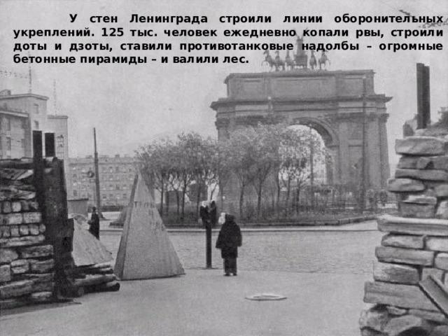 У стен Ленинграда строили линии оборонительных укреплений. 125 тыс. человек ежедневно копали рвы, строили доты и дзоты, ставили противотанковые надолбы – огромные бетонные пирамиды – и валили лес.