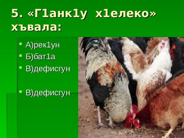 5. «Г1анк1у х1елеко» хъвала:
