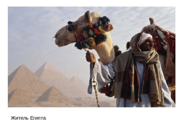 Житель Египта
