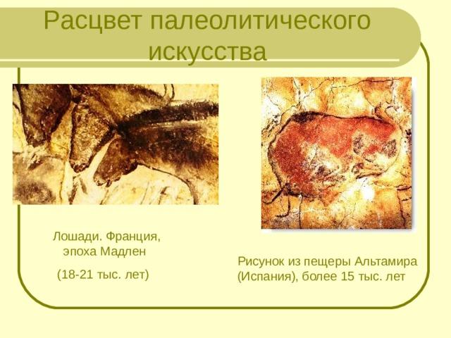 Расцвет палеолитического искусства Лошади. Франция, эпоха Мадлен (18-21 тыс. лет) Рисунок из пещеры Альтамира (Испания), более 15 тыс. лет