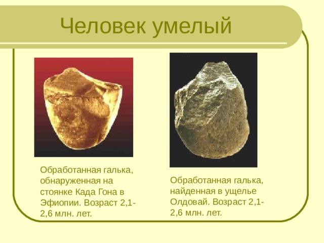 Человек умелый Обработанная галька, обнаруженная на стоянке Када Гона в Эфиопии. Возраст 2,1-2,6 млн. лет. Обработанная галька, найденная в ущелье Олдовай. Возраст 2,1-2,6 млн. лет.