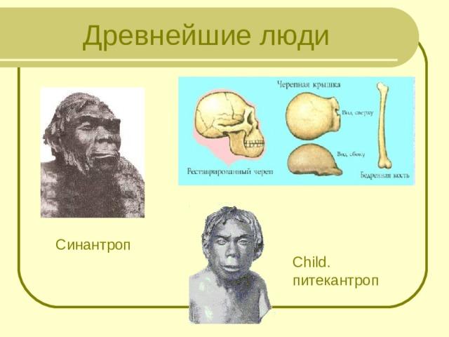 Древнейшие люди Синантроп Сhild. питекантроп