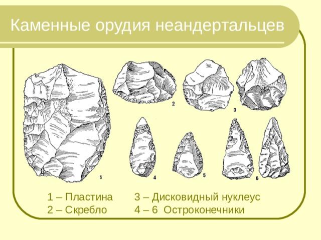 Каменные орудия неандертальцев 1 – Пластина 3 – Дисковидный нуклеус 2 – Скребло 4 – 6 Остроконечники