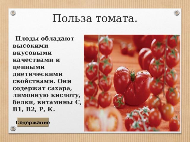 Польза томата.  Плоды обладают высокими вкусовыми качествами и ценными диетическими свойствами. Они содержат сахара, лимонную кислоту, белки, витамины С, В1, В2, Р, К. Содержание