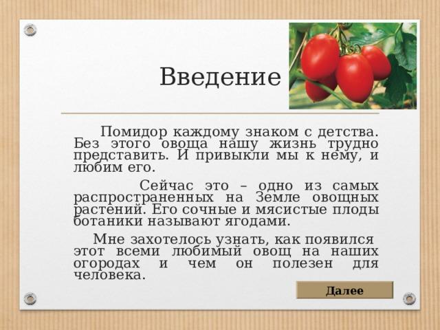 Введение  Помидор каждому знаком с детства. Без этого овоща нашу жизнь трудно представить. И привыкли мы к нему, и любим его.  Сейчас это – одно из самых распространенных на Земле овощных растений. Его сочные и мясистые плоды ботаники называют ягодами.  Мне захотелось узнать, как появился этот всеми любимый овощ на наших огородах и чем он полезен для человека. Далее