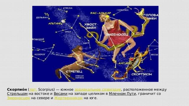 Скорпио́н ( лат. Scorpius)— южное зодиакальное созвездие , расположенное между Стрельцом на востоке и Весами на западе целиком в Млечном Пути , граничит со Змееносцем на севере и Жертвенником на юге.