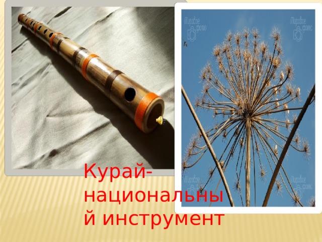 Курай-национальный инструмент