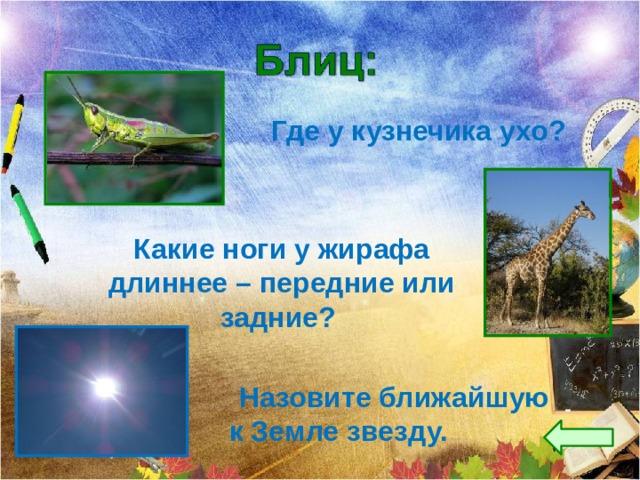 Где у кузнечика ухо? Какие ноги у жирафа длиннее – передние или задние?  Назовите ближайшую к Земле звезду.