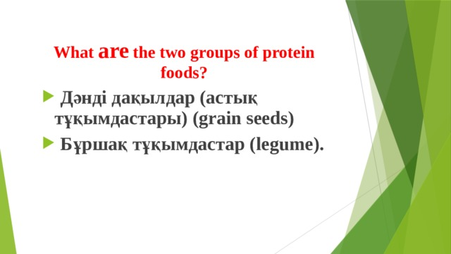 What are the two groups of protein foods?