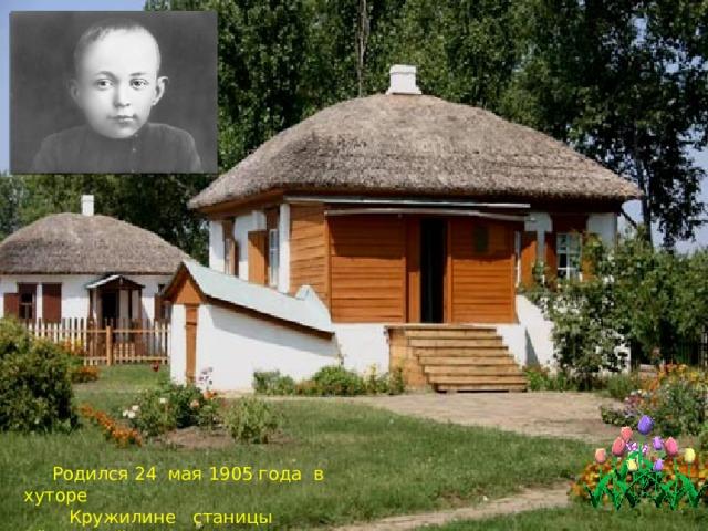 Родился 24 мая 1905 года в хуторе  Кружилине станицы Вёшенской.