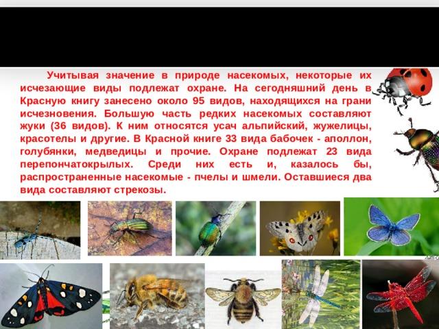 Учитывая значение в природе насекомых, некоторые их исчезающие виды подлежат охране. На сегодняшний день в Красную книгу занесено около 95 видов, находящихся на грани исчезновения. Большую часть редких насекомых составляют жуки (36 видов). К ним относятся усач альпийский, жужелицы, красотелы и другие. В Красной книге 33 вида бабочек - аполлон, голубянки, медведицы и прочие. Охране подлежат 23 вида перепончатокрылых. Среди них есть и, казалось бы, распространенные насекомые - пчелы и шмели. Оставшиеся два вида составляют стрекозы. www.PresentationPro.com