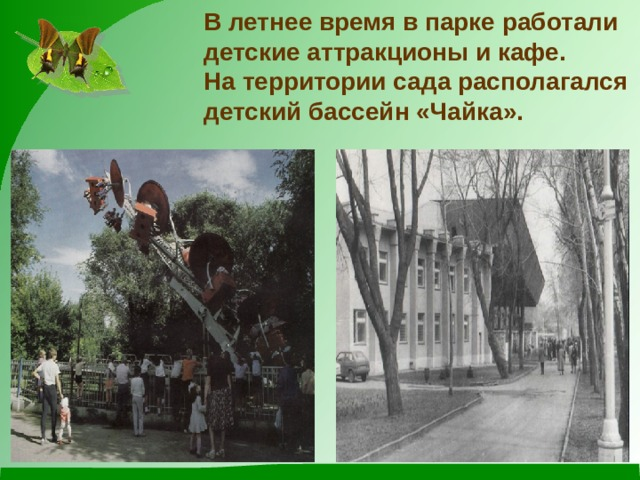Влетнее время в парке работали детские аттракционы и кафе.  На территории сада располагался детский бассейн «Чайка».