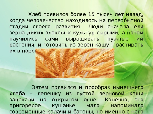 Хлеб появился более 15 тысяч лет назад, когда человечество находилось на первобытной стадии своего развития. Люди сначала ели зерна диких злаковых культур сырыми, а потом научились сами выращивать нужные им растения, и готовить из зерен кашу – растирать их в порошок и смешивать с водой.  Затем появился и прообраз нынешнего хлеба – лепешку из густой зерновой каши запекали на открытом огне. Конечно, это пригорелое кушанье мало напоминало современные калачи и батоны, но именно с него и началась история хлеба.