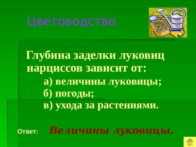 Цветоводство  Глубина заделки луковиц нарциссов зависит от:  а) величины луковицы;  б) погоды;  в) ухода за растениями.  Ответ:  Величины луковицы.