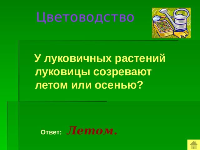 Цветоводство  У луковичных растений луковицы созревают летом или осенью?  Ответ:  Летом.