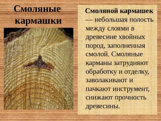 Смоляные  кармашки  Смоляной кармашек — небольшая полость между слоями в древесине хвойных пород, заполненная смолой. Смоляные карманы затрудняют обработку и отделку, заволакивают и пачкают инструмент, снижают прочность древесины.