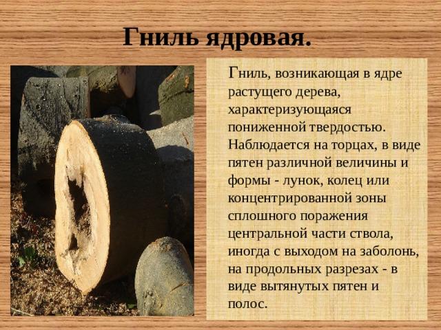 Гниль  ядровая.  Г ниль, возникающая в ядре растущего дерева, характеризующаяся пониженной твердостью. Наблюдается на торцах, в виде пятен различной величины и формы - лунок, колец или концентрированной зоны сплошного поражения центральной части ствола, иногда с выходом на заболонь, на продольных разрезах - в виде вытянутых пятен и полос.