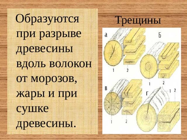 Трещины  Образуются при разрыве древесины вдоль волокон от морозов, жары и при сушке древесины.