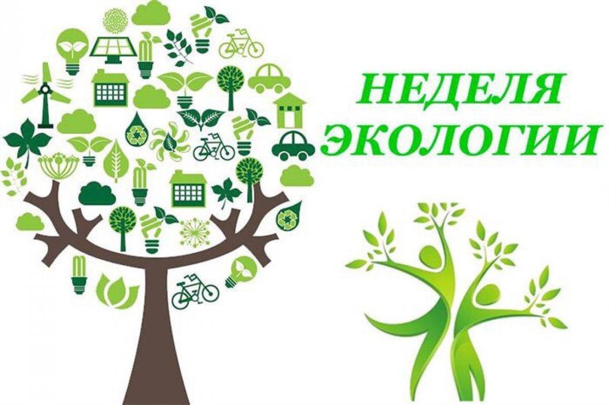 Картинки к году экологии в детском саду