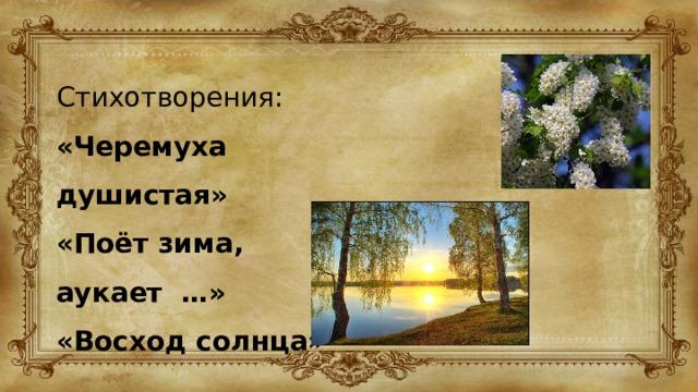 Стихотворения: «Черемуха душистая» «Поёт зима, аукает …» «Восход солнца»