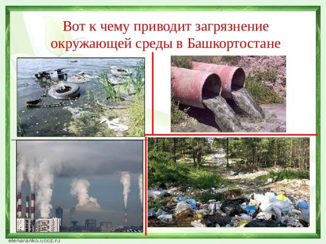 Вот к чему приводит загрязнение окружающей среды в Башкортостане