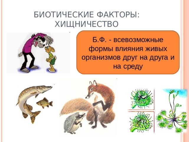 БИОТИЧЕСКИЕ ФАКТОРЫ: ХИЩНИЧЕСТВО Б.Ф. - всевозможные формы влияния живых организмов друг на друга и на среду