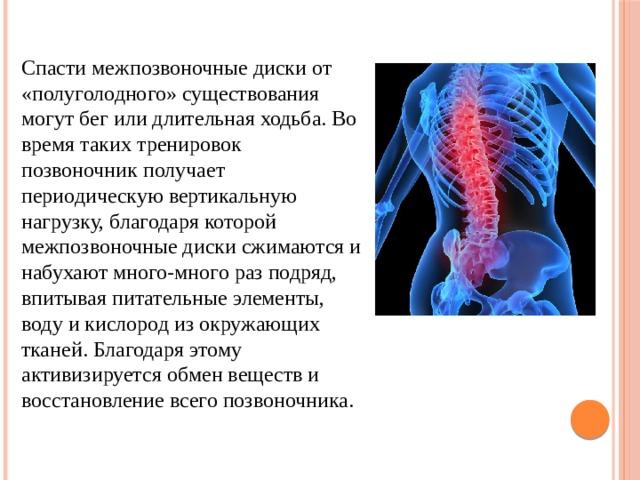 Спасти межпозвоночные дискиот «полуголодного» существования могут бег или длительная ходьба. Во время таких тренировок позвоночник получает периодическую вертикальную нагрузку, благодаря которой межпозвоночные диски сжимаются и набухают много-много раз подряд, впитывая питательные элементы, воду и кислород из окружающих тканей. Благодаря этому активизируется обмен веществ и восстановление всего позвоночника.
