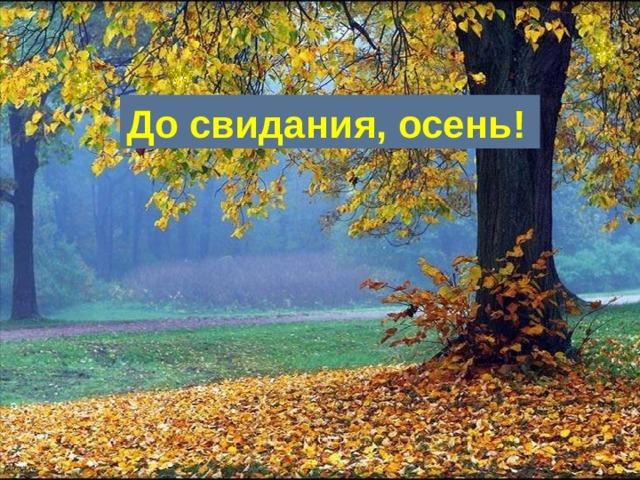 До свидания, осень!