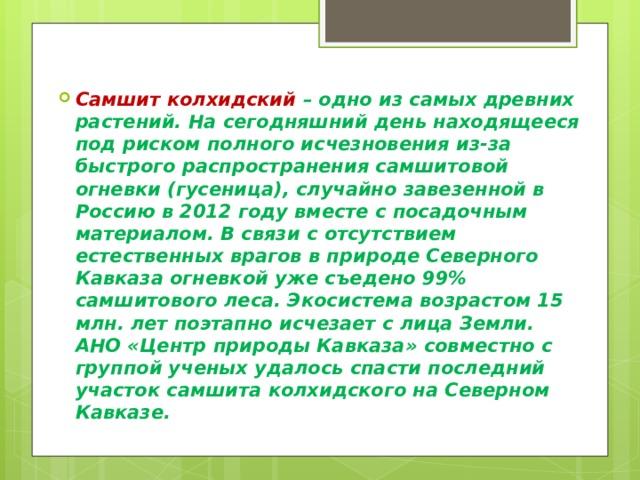 Самшит колхидский – одно из самых древних растений. На сегодняшний день находящееся под риском полного исчезновения из-за быстрого распространения самшитовой огневки (гусеница), случайно завезенной в Россию в 2012 году вместе с посадочным материалом. В связи с отсутствием естественных врагов в природе Северного Кавказа огневкой уже съедено 99% самшитового леса. Экосистема возрастом 15 млн. лет поэтапно исчезает с лица Земли. АНО «Центр природы Кавказа» совместно с группой ученых удалось спасти последний участок самшита колхидского на Северном Кавказе.