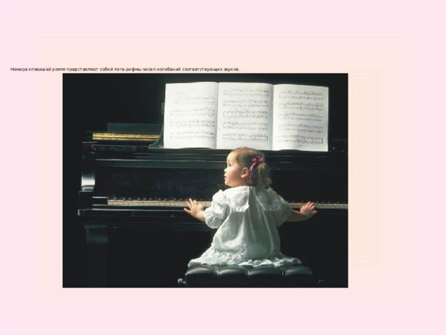 Номера клавишей рояля представляют собой лога-рифмы чисел колебаний соответствующих звуков.