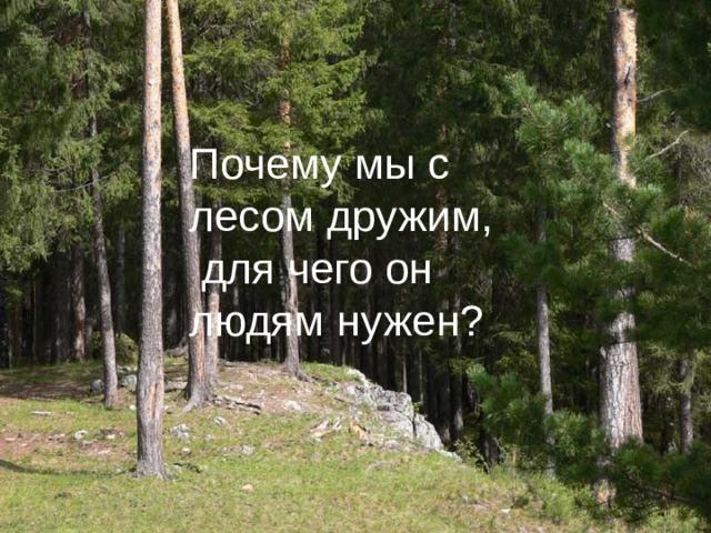 Почему мы с лесом дружим,  для чего он людям нужен?