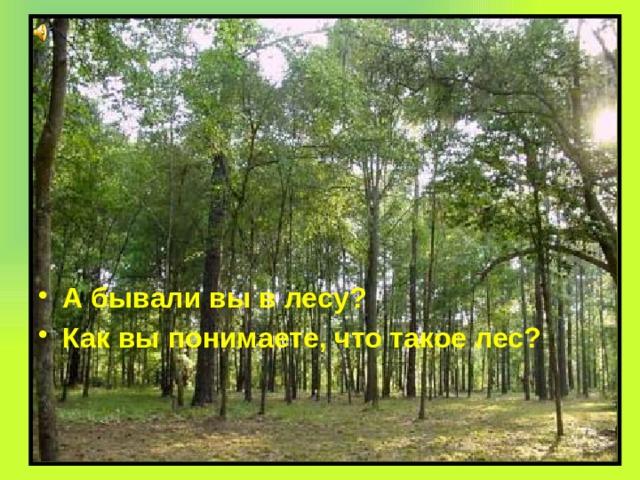 А бывали вы в лесу? Как вы понимаете, что такое лес?