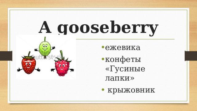 A gooseberry