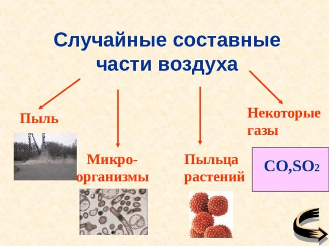 Случайные составные части воздуха Некоторые газы Пыль Пыльца растений Микро-организмы CO,SO 2