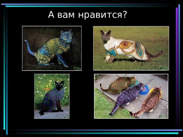 Видеоуроки по истории 11 класс история россии