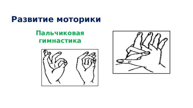 Развитие моторики Пальчиковая гимнастика