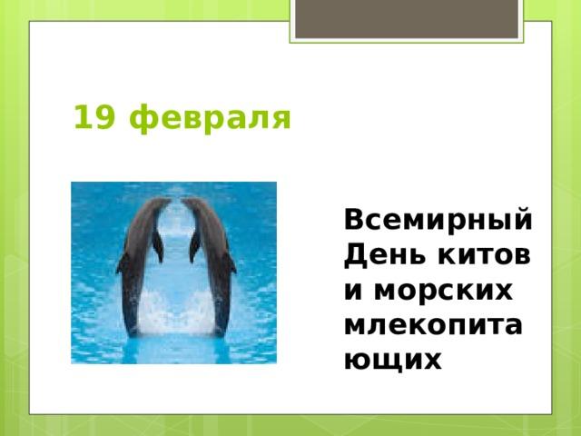 19 февраля Всемирный День китов и морских млекопитающих