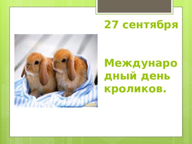 27 сентября  Международный день кроликов.