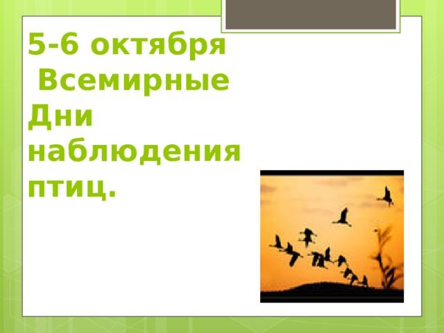 5-6 октября  Всемирные Дни наблюдения птиц.