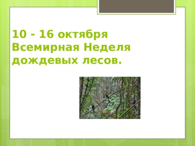 10 - 16 октября  Всемирная Неделя дождевых лесов.